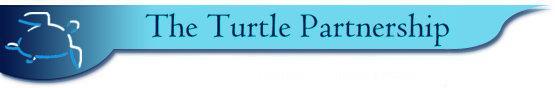 Turtle Partnership logo